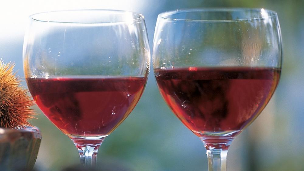 5 Vernatsch-Weine zum Verlieben und eine Weinkarte - Stol.it