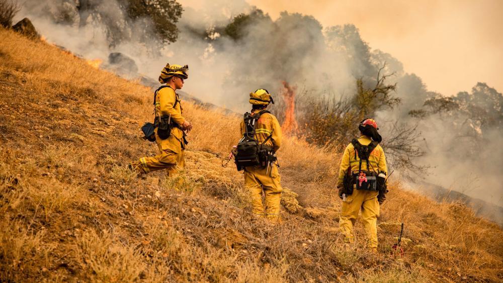 US-Waldbrände: Große Schäden in Kaliforniens Weinbauregion