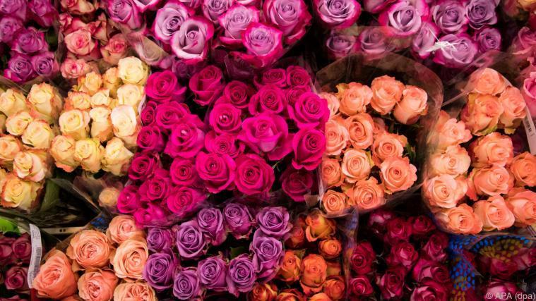 Rosen zum valentinstag wie viele