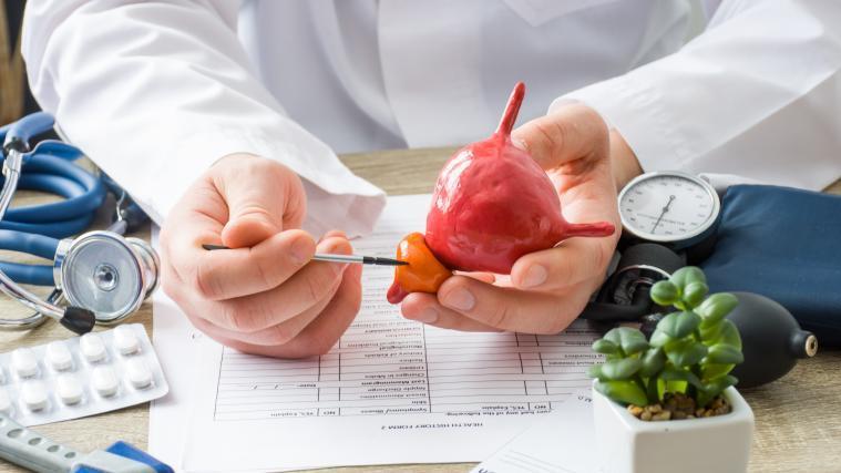prostatitis antibiotika therapie